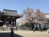 池上本門寺とシニフィアン シニフィエ