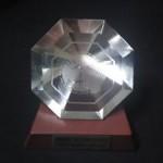 1995年 国際形成外科学会最優秀論文賞